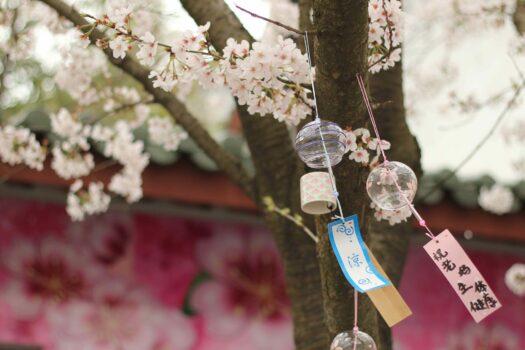 Le Fūrin, petit carillon japonais qui sent bon l'été