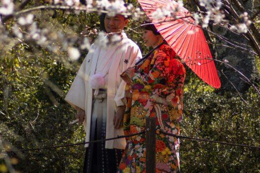Le haori, une veste japonaise traditionnelle